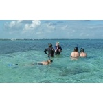 Snorkeling at Ambergris Caye. Photo by Joyce Meyer and Mike West.  All rights reserved.