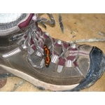 Butterfly on Birder's Boot. Photo by Rick Taylor. Copyright Borderland Tours. All rights reserved.