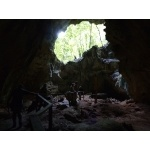 Pictograph Cave, Los Haitises NP. Photo by Rick Taylor. Copyright Borderland Tours. All rights reserved.